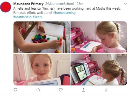 15 May Finches maths